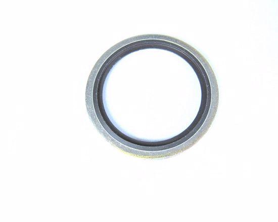 Obrázek z USIT kroužky